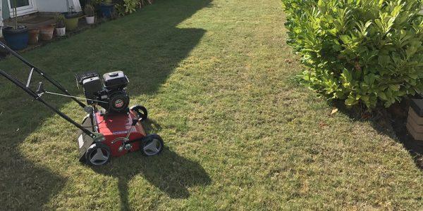 jak wykonać wertykulację trawnika