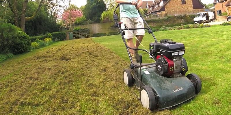 Jak wygląda pielęgnacja trawnika po zimie?