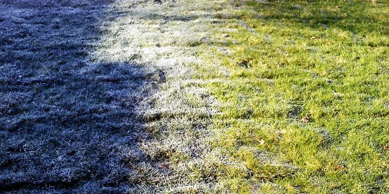 Pielęgnacja trawnika po zimie — o czym pamiętać?